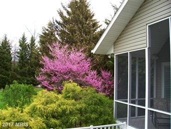 6229 Greenbriar Terrace Photo #28
