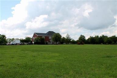 1715 Cobb Ranch Road Photo #18