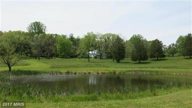 162 Rollins Ford Road Photo #19