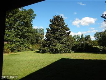 261 Circle View Road Photo #21