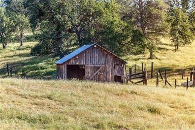 3979 Oak Grove Road Photo #13