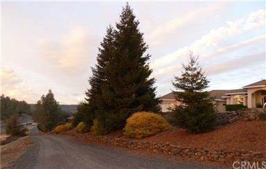9 Windy Ridge Road Photo #47