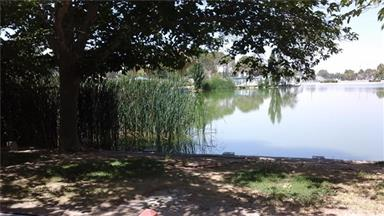 21317 Lake Shore Drive #27 Photo #3