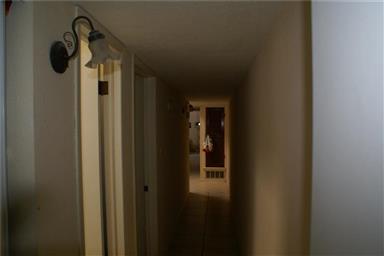 3106 Isla Marino Street Photo #17