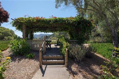 131 Hacienda Carmel Photo #16