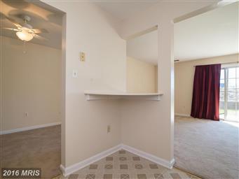 110 Timberlake Terrace #2 Photo #8