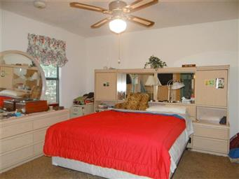 114 Weeping Willow Cove Photo #21