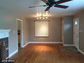 10916 Donelson Drive Photo #3