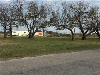 4229 County Road 201 Photo #7