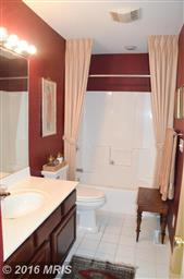 28596 Clubhouse Drive Photo #22