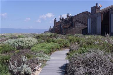 236 Monterey Dunes Way Photo #30