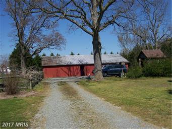 22365 Hog Creek Road Photo #3