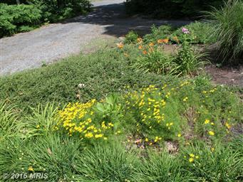 17828 Jacobs Rd Photo #25