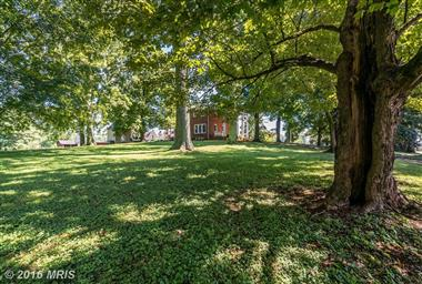 18185 Liberty Hall Photo #18