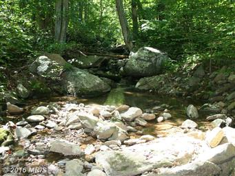 346 Riley Hollow Road Photo #25