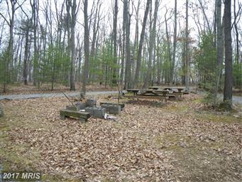 21461 Buck Trail Photo #19