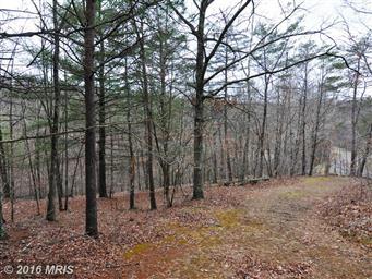 3191 Hunting Ridge Road Photo #5