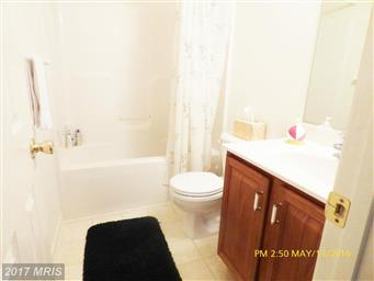 1173 Royal Way Photo #29