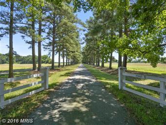 27465 Southside Island Creek Road Photo #2