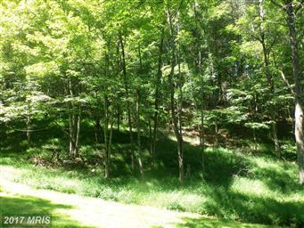 21601 Bennett Run Road Photo #15