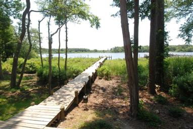 10742 Piney Island Drive Photo #7