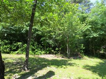 196 West Holly Trail Photo #35