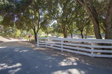 14 Lismore Lane Photo #73