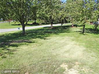 5668 Oakwood Drive Photo #3