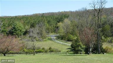2043 Pleasant View Road Photo #26