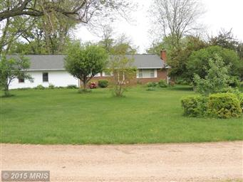 12134 Dissington Lane Photo #2
