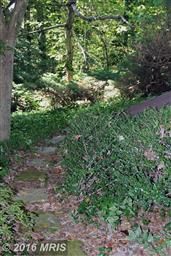 44848 Hickory Landing Way Photo #27