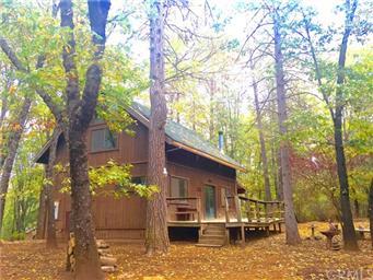 10764 Rosa Trail Photo #41
