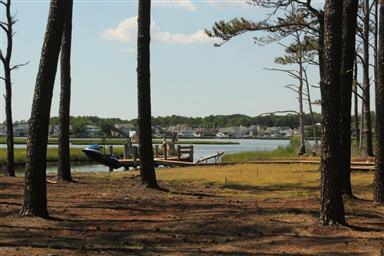 517 Tidewater Cove Photo #43