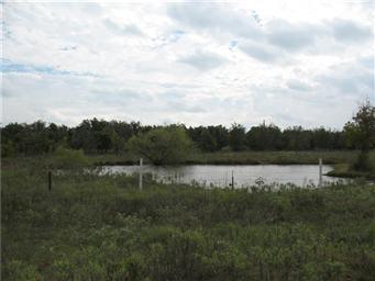 1543 County Road 416 Photo #24