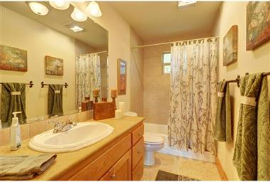 451 CHIMNEY COVE DR Photo #16