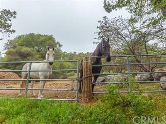5146 Chowchilla Mtn Road Photo #30