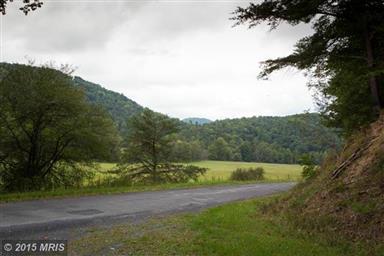 8338 Reeds Creek Road Photo #25