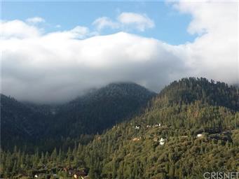 15432 Shasta Way Photo #36