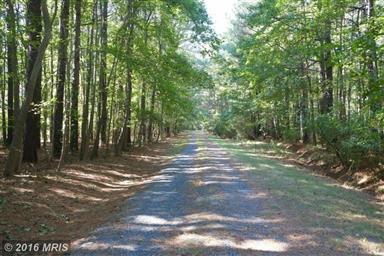 5834 Irish Creek Road Photo #12