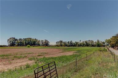 6441 & 644 County Road 3 Photo #19