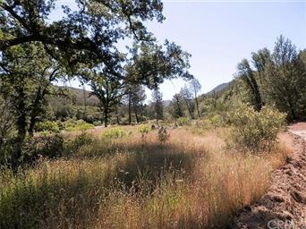 11569 Bartlett Springs Road Photo #11