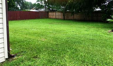 1308 E Goliad Avenue Photo #16