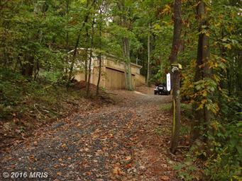 715 Maverick Trail Photo #5