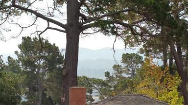 166 Del Mesa Carmel Photo #7