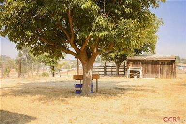 4440 Whispering Oak Way Photo #11