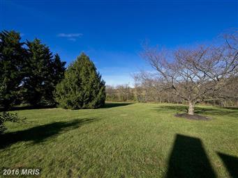 266 Opequon Woods Circle Photo #25