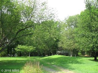 49778 Fresh Pond Neck Road Photo #25