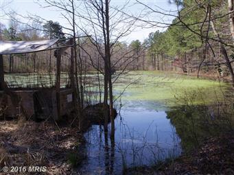 2107 Church Creek Road Photo #26