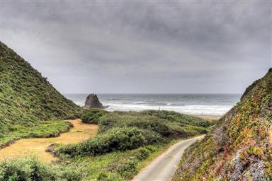 15300 Irish Beach Drive Photo #14