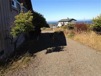 38521 Pacific Drive Photo #13